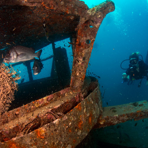 PADI deep, wreck and nitrox specialty courses