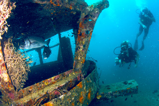 Deep, wreck and nitrox specvialty dive courses