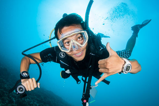 1 month scuba diving internship in Koh Tao, Thailand